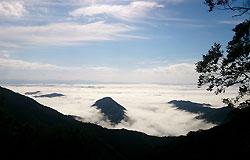大江山の雲海