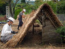 産屋の茅を葺き替え