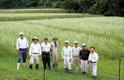 白い花が咲くソバ畑