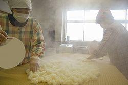 米に麹菌を混ぜ込む