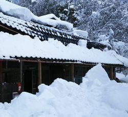 雪の重みで損壊した屋根
