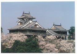 桜がたくさんあったころの福知山城