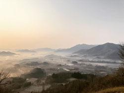 夜久野高原の朝霧