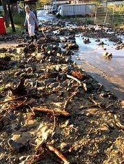 土石流で小川が埋まった