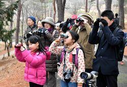 野鳥を観察